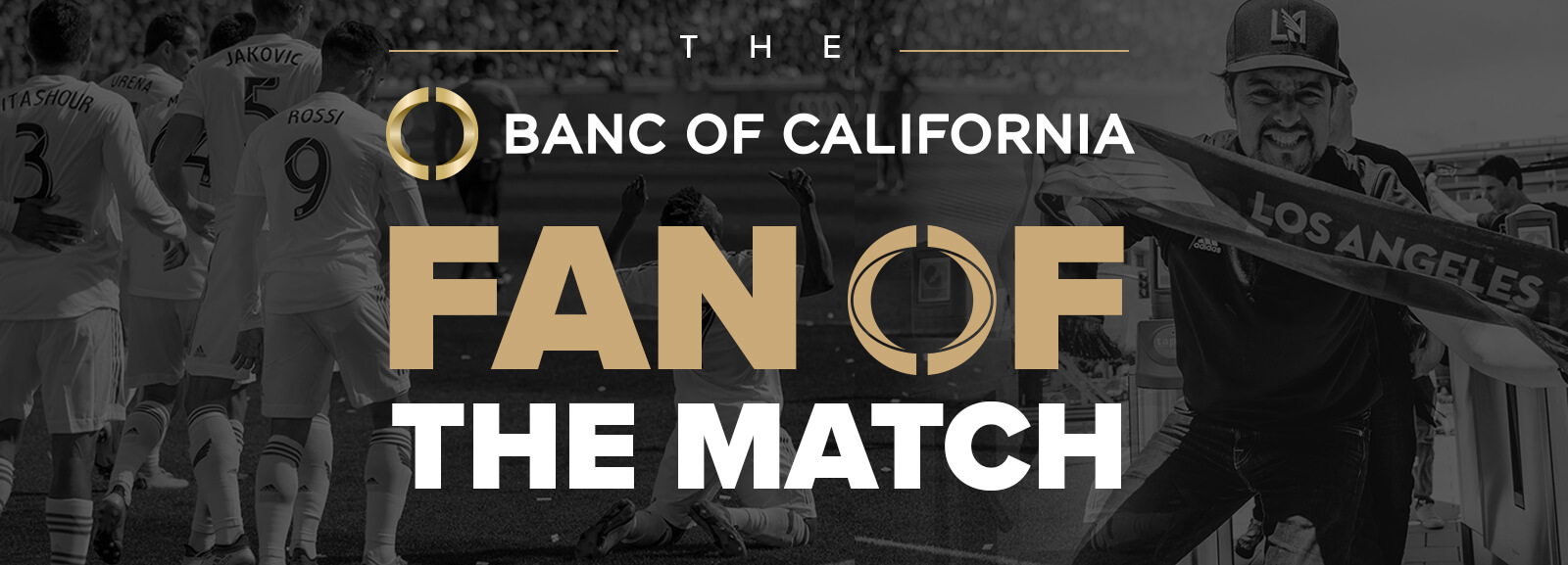 fan-of-the-match-web-page-header